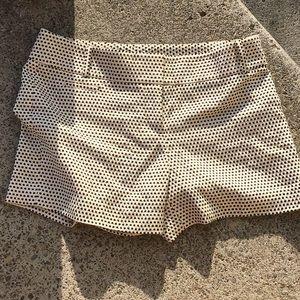 LOFT Newsboy Shorts
